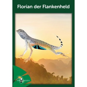 Opal Regenwald 17 Florian der Flankenheld # 11100 6ply 150gr