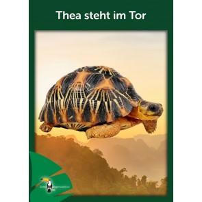 Opal Regenwald 17 Thea steht im Tor # 11093 4ply 100gr