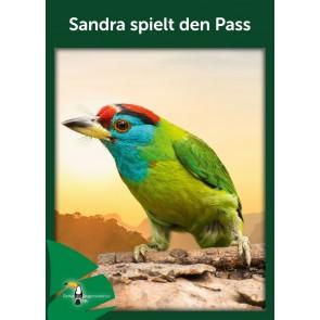 Opal Regenwald 17 Sandra spielt den Pass # 11094 4ply 100gr