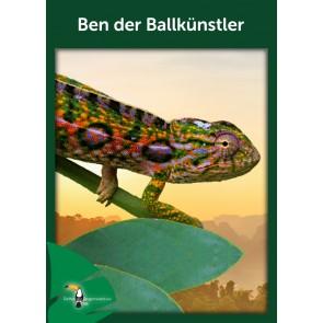 Opal Regenwald 17 Ben der Ballkünstler # 11096 4ply 100gr