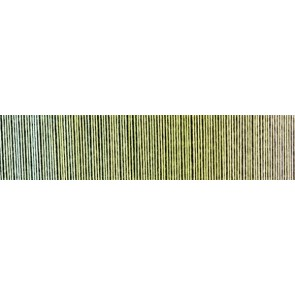 Schoppel Zauberball cotton (organic) # 2341 junges Gemüse