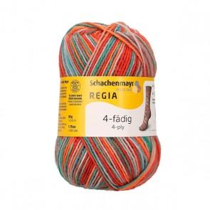 Schachenmayr Regia color # 01103 4ply 50gr