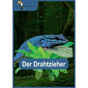 Opal Regenwald 16 Drahtzieher # 9903 4ply 100gr