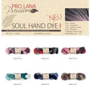 Pro Lana Soul hand dyed color # 81 100gr