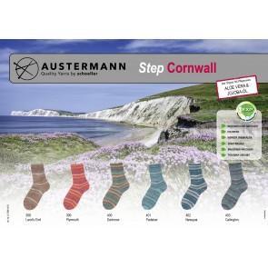 Austermann Step 4 Cornwall # 400 4ply 100gr